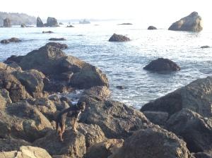 trin_cliffs